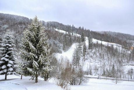 Hotel Gwarek - Boże Narodzenie w Ustroniu (4 dni)